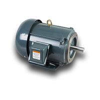 BMM Totally Enclosed Premium Efficiency Motor