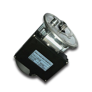 120v Single Phase Asynchronous Electric AC Motor For Food Processor MM114